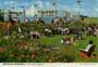 john hinde postcards - Butlins